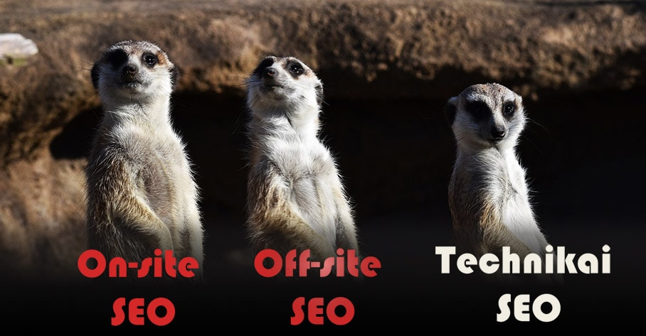 SEO fajtái, on-site, off-site és technikai SEO
