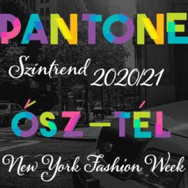arculattervezés pantone színekkel nyfw 2020 2021 ősz tél