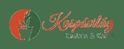 Kaspóvilág logó shoprenter webáruház testreszabás